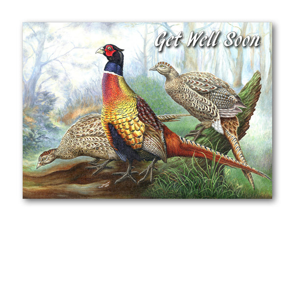 Pheasant Get Well Soon Card from Dormouse Cards