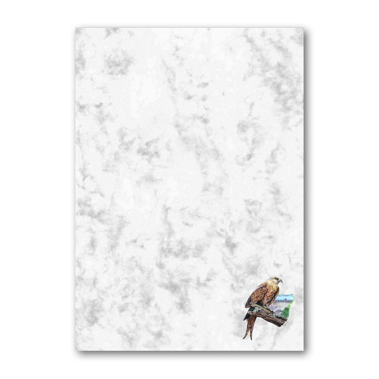 Pack of 6 A5 Red Kite Marble Notepaper from Dormouse Cards