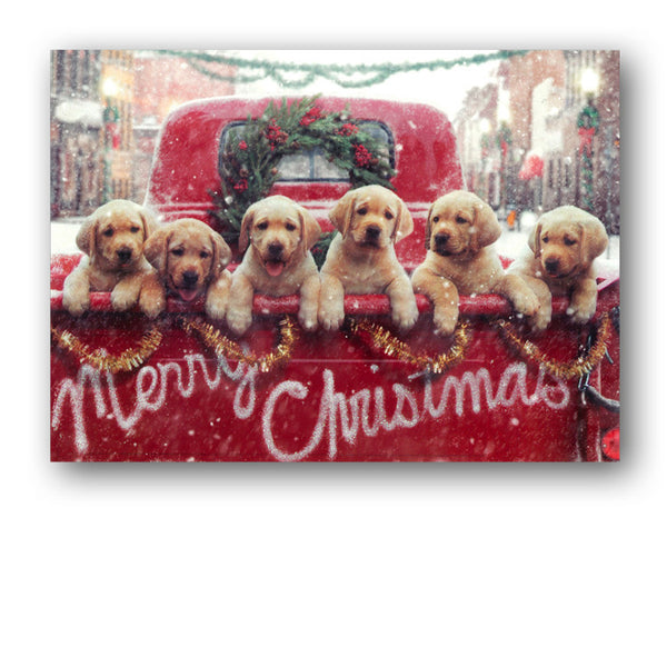 Labrador Puppies Christmas Card - Grandparents from Dormouse Cards
