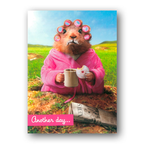 Funny Avanti Guinea Pig Eating a Doughnut Greetings Card from Dormouse Cards