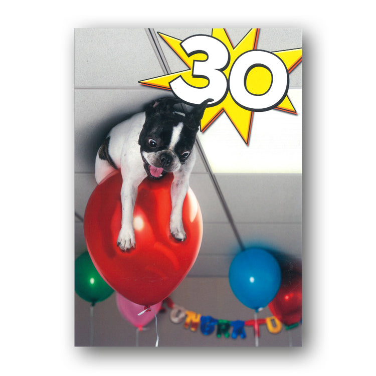 Funny Dog with Balloons 30th Birthday Card by Avanti from Dormouse Cards