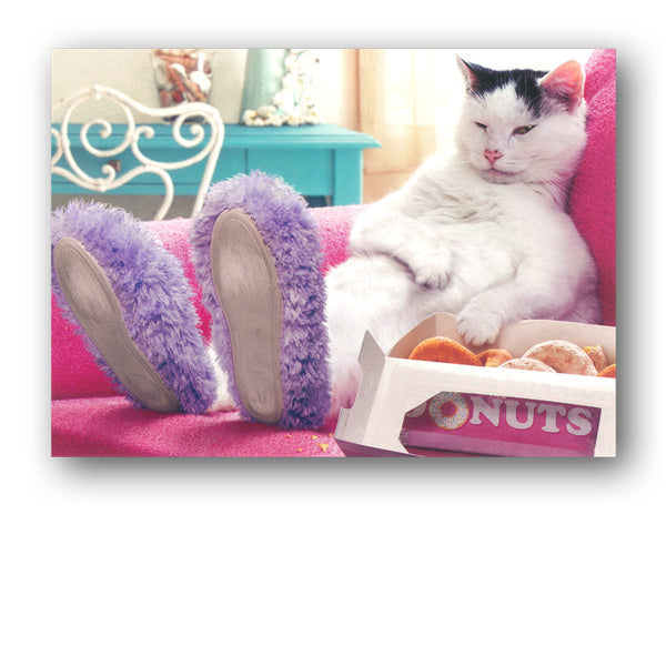 Funny Cat Eating Doughnuts Birthday Card by Avanti from Dormouse Cards