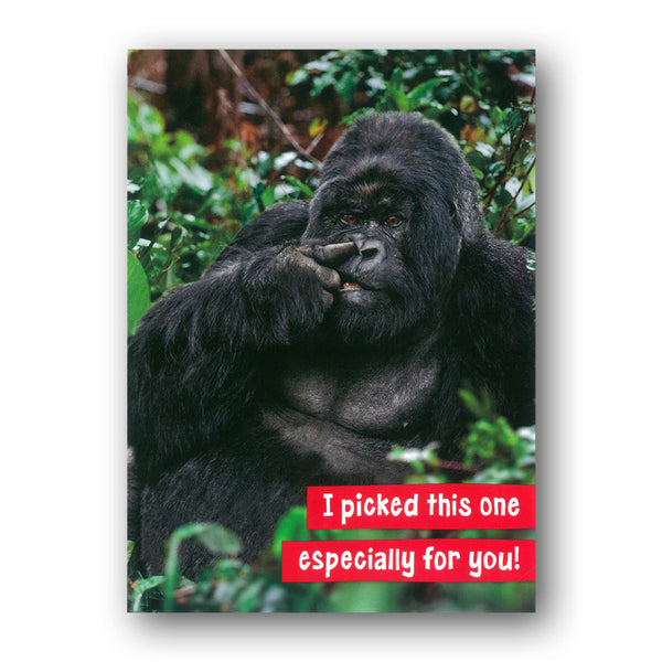Funny Gorilla Birthday Card by Avanti from Dormouse Cards