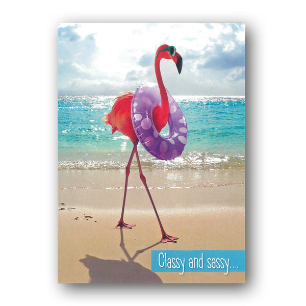 Funny Flamingo Birthday Card by Avanti from Dormouse Cards