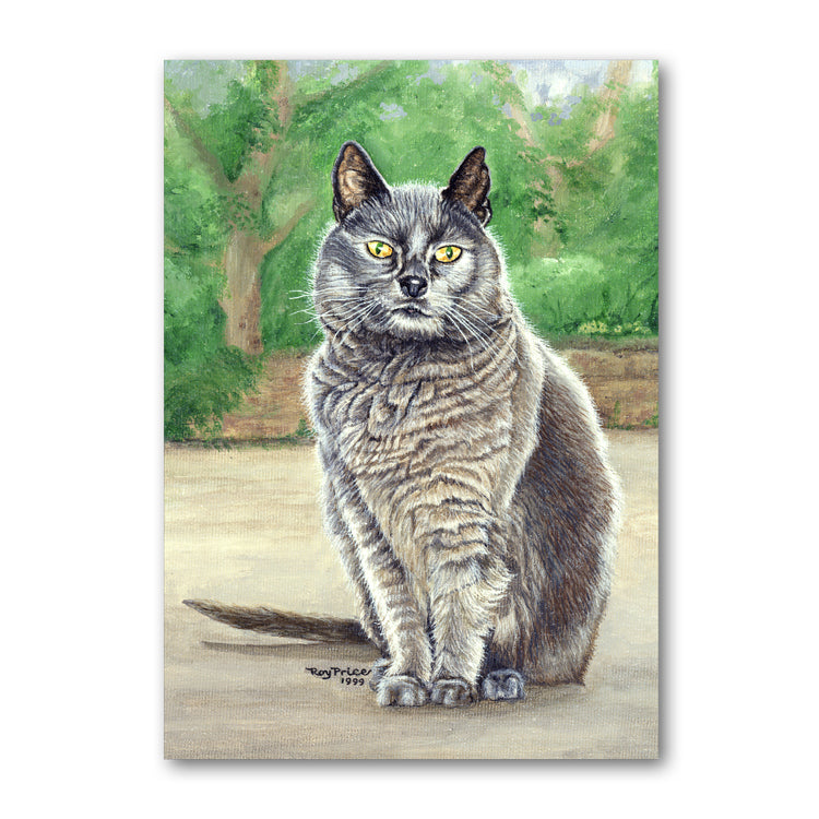 Suzy the Grey Cat Father's Day Card from Dormouse Cards