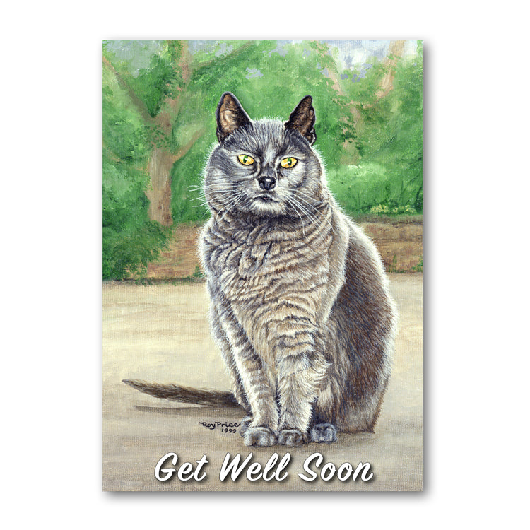Suzy the Grey Cat Get Well Soon Card from Dormouse Cards