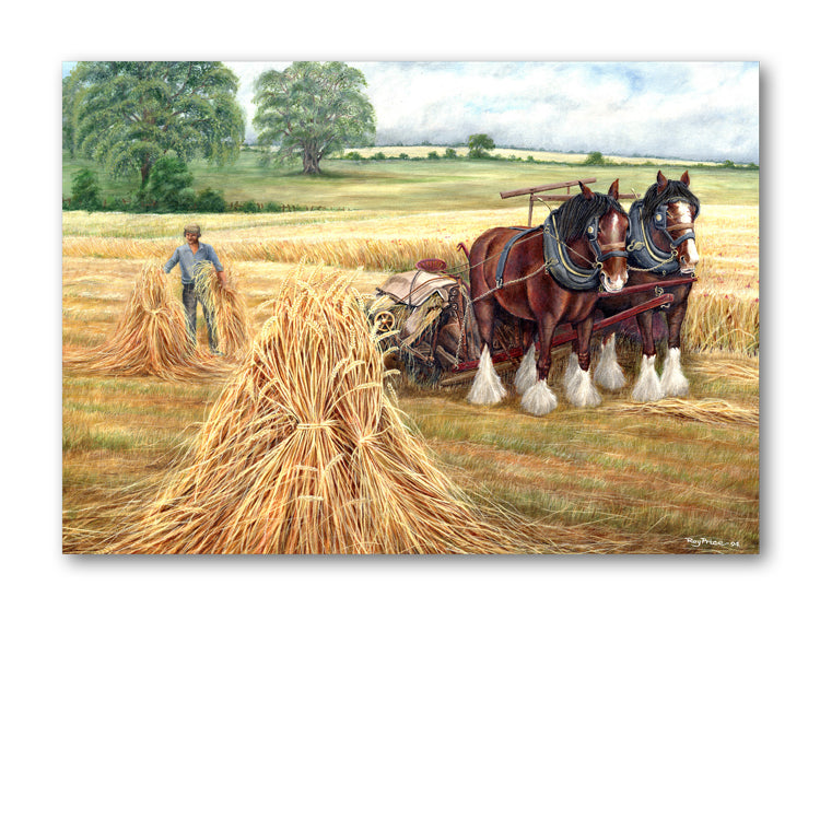 Harvest Time Greetings Card from Dormouse Cards