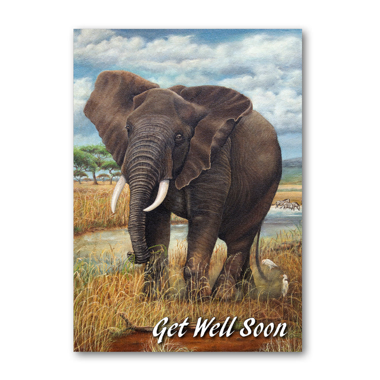 Elephant Get Well Soon Card from Dormouse Cards