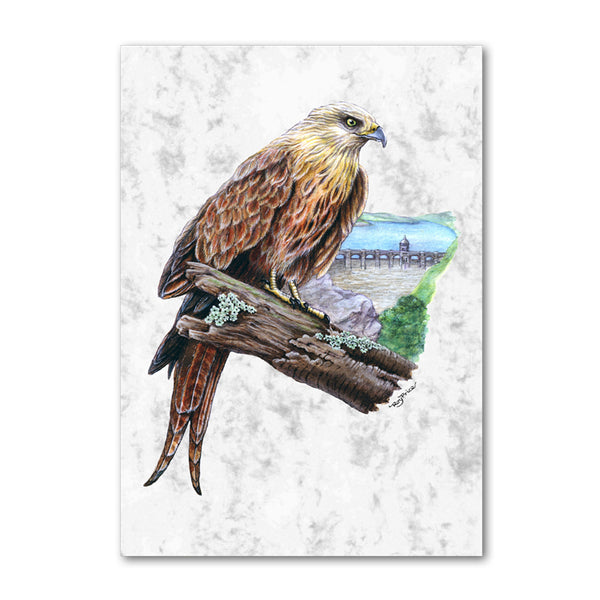 Pack of 10 A6 Red Kite at Elan Valley Marble Postcards from Dormouse Cards
