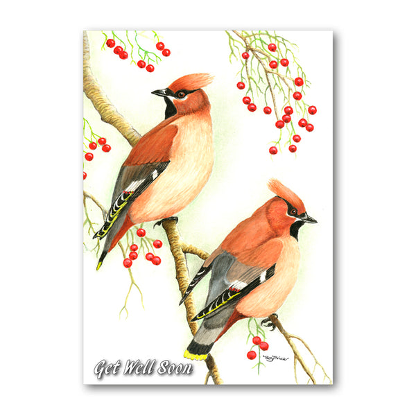 Cedar Waxwing Get Well Soon Card from Dormouse Cards