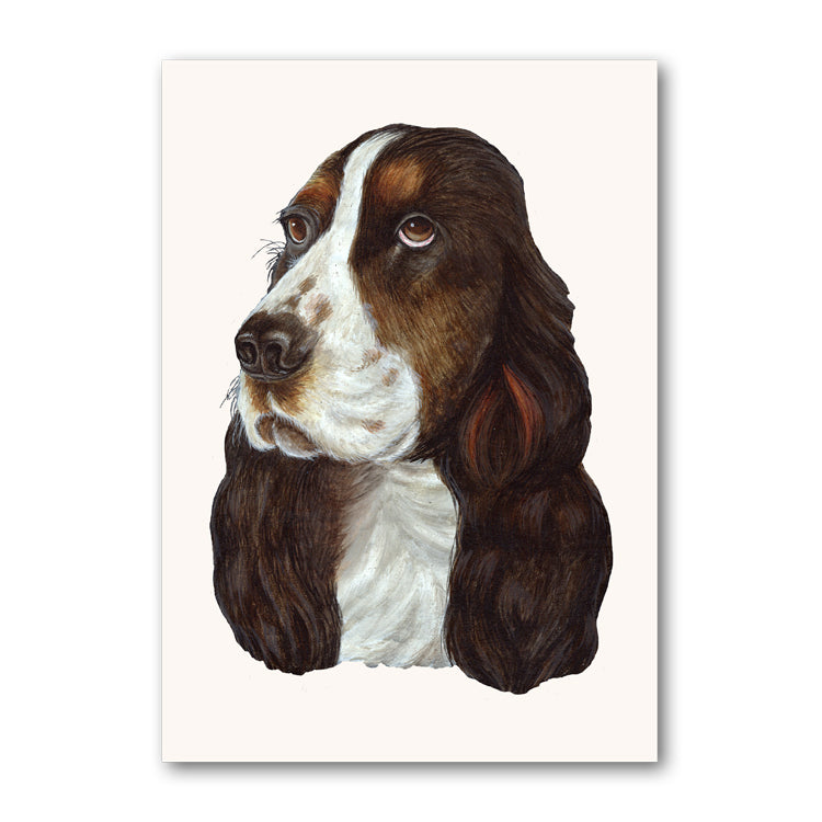 Cocker Spaniel Birthday Card from Dormouse Cards