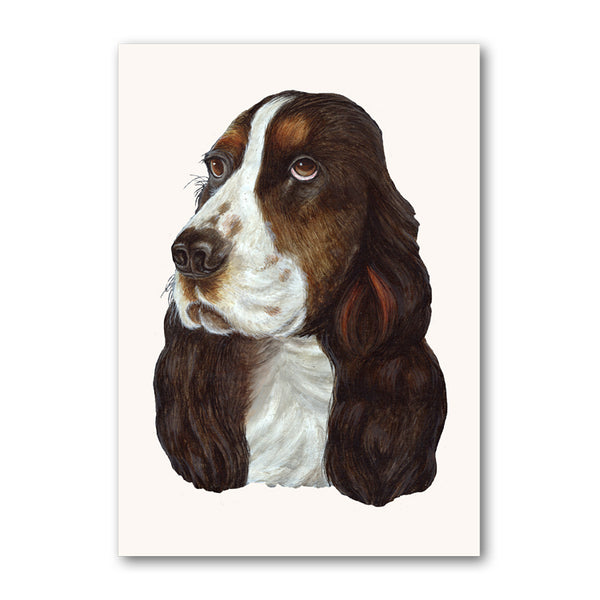 Cocker Spaniel Greetings Card from Dormouse Cards