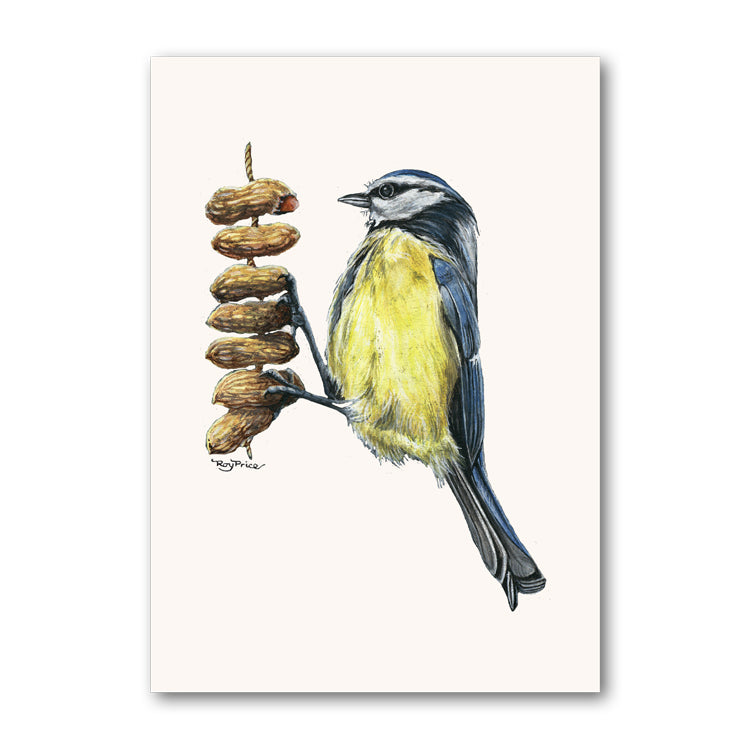 Blue Tit Perching on Peanuts Birthday Card from Dormouse Cards