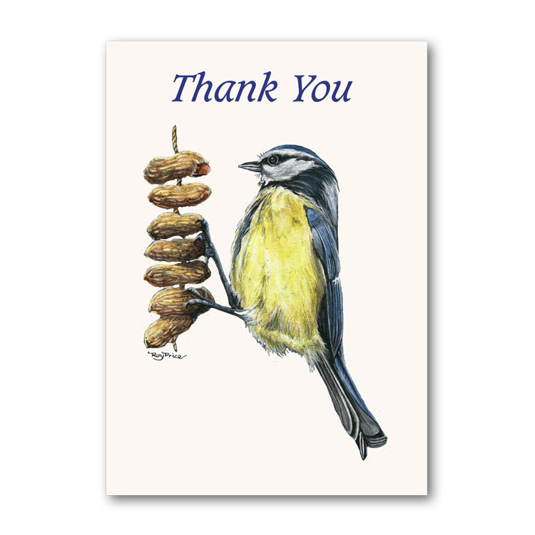 Blue Tit Perched on Peanuts from Dormouse Cards