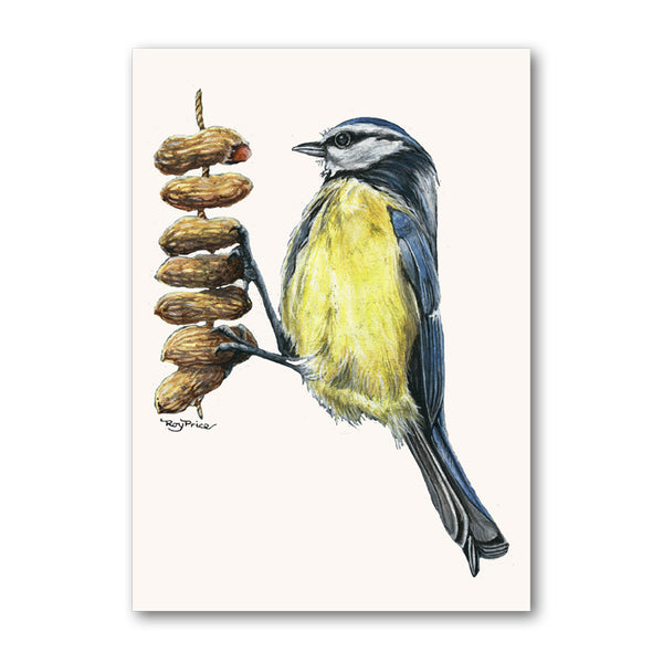 Pack of 10 Blue Tit Perched on Peanuts Gift Tags from Dormouse Cards