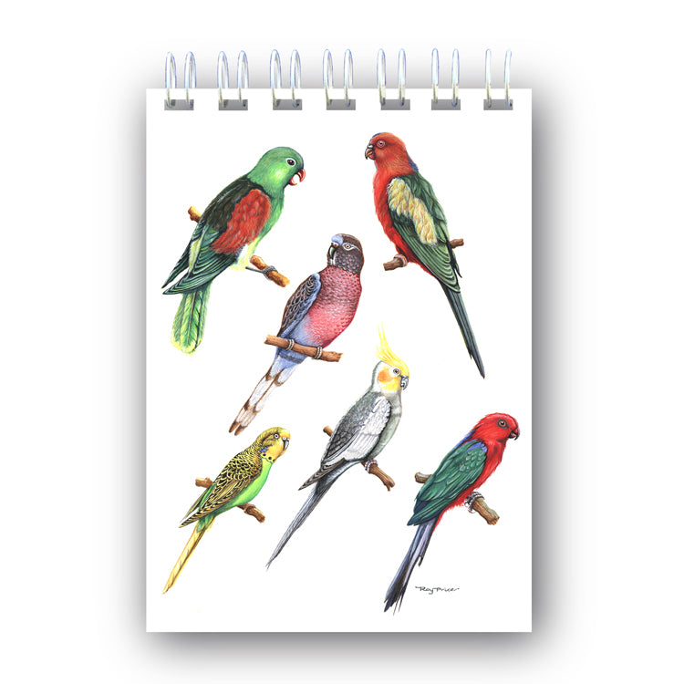 A6 Wire Bound Exotic Birds Notebook from Dormouse Cards