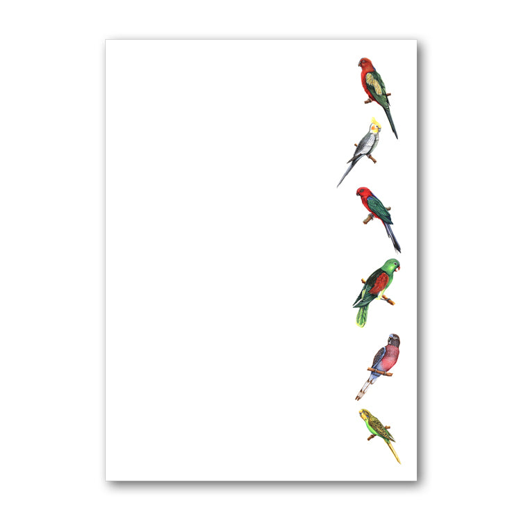 Pack of 6 A5 Notepaper Exotic Birds from Dormouse Cards