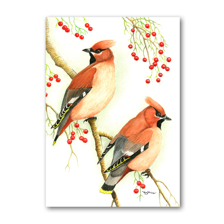 Lustre Mint Green Wrap 2 Cedar Waxwing Gift Tags and Birthday Card from Dormouse Cards