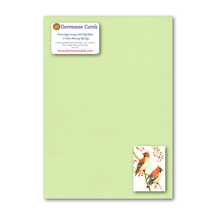 Lustre Mint Green Wrap and Cedar Waxwing Gift Tags from Dormouse Cards