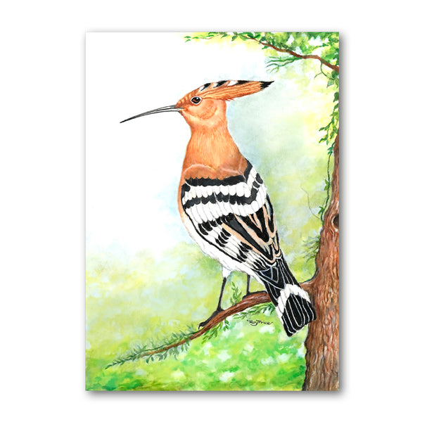 Pack of 5 Hoopoe Notelets from Dormouse Cards