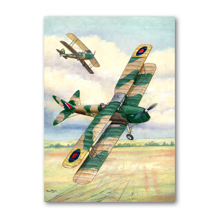 Pack of 5 De Havilland Tiger Moth Biplane Notelets from Dormouse Cards