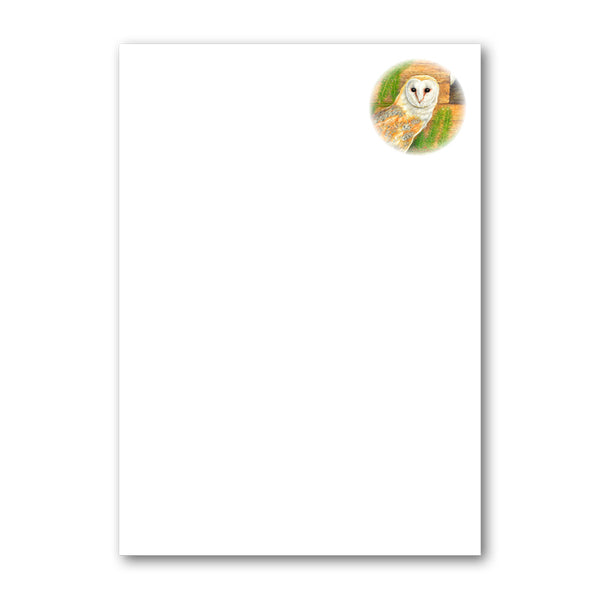 Pack of 6 A5 Barn Owl Notepaper from Dormouse Cards