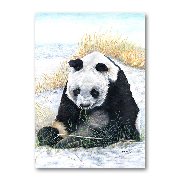 Panda Christmas Card from Dormouse Cards