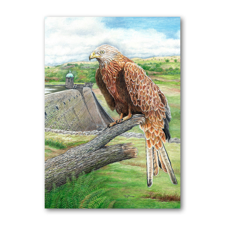 Red Kite Elan Valley Powys Wales Father's Day Card from Dormouse Cards
