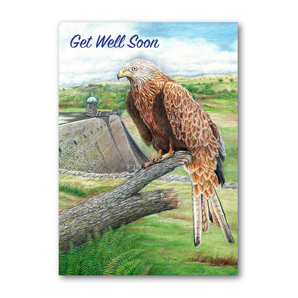 Red Kite Elan Valley Powys Wales from Dormouse Cards