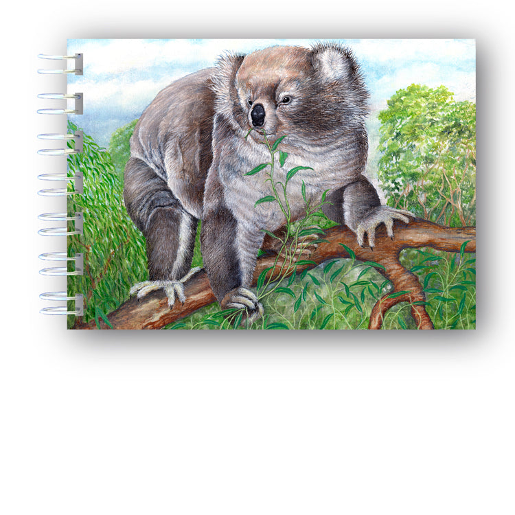 A6 Wire Bound Koala Bear Notebook from Dormouse Cards