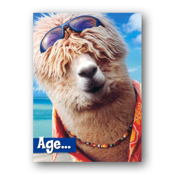 Funny Surfer Alpaca Birthday Card from Dormouse Cards