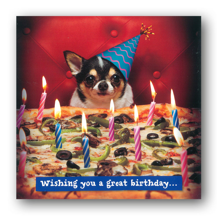 Funny Birthday Card - Dog with Pizza Birthday Cake by Avanti from Dormouse Cards