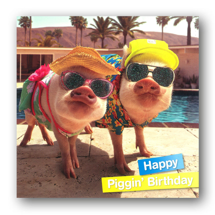 Funny Pig Birthday Card - Happy Piggin' Birthday by Avanti