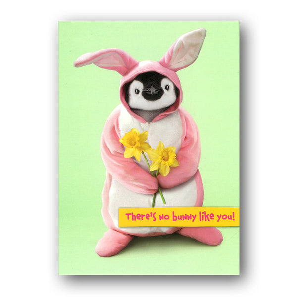 Funny Penguin Easter Card - No Bunny Like You! by Avanti from Dormouse Cards