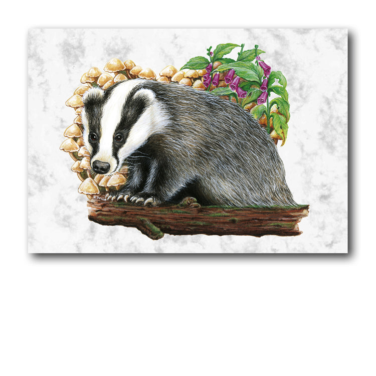 Marble Badger Greetings Card and Gift Tags from Dormouse Cards