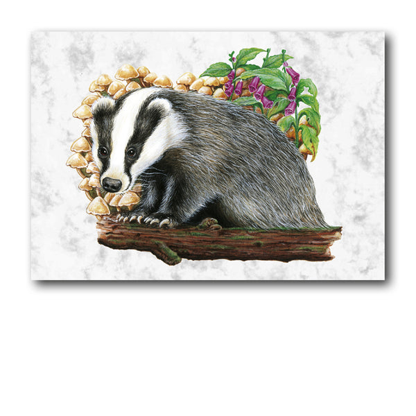 Badger Marble Postcards from Dormouse Cards