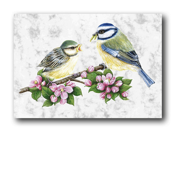 Fine Art Blue Tits Birthday Card on Luxury Marble board from Dormouse Cards