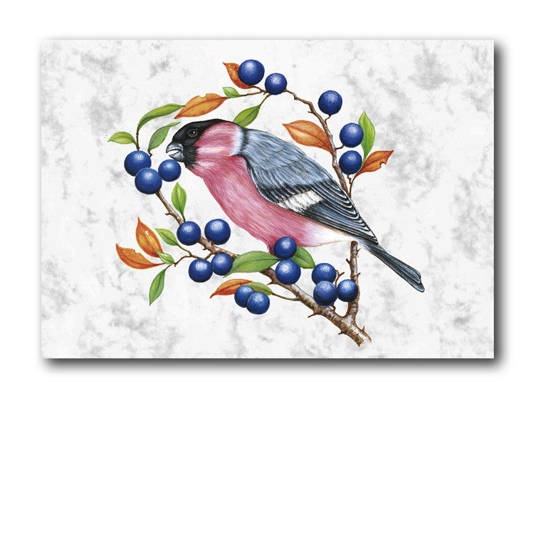 Fine Art Bullfinch Greetings Birthday Card on Luxury Marble board from Dormouse Cards