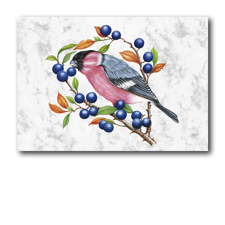 Marble Bullfinch Gift Tags from Dormouse Cards