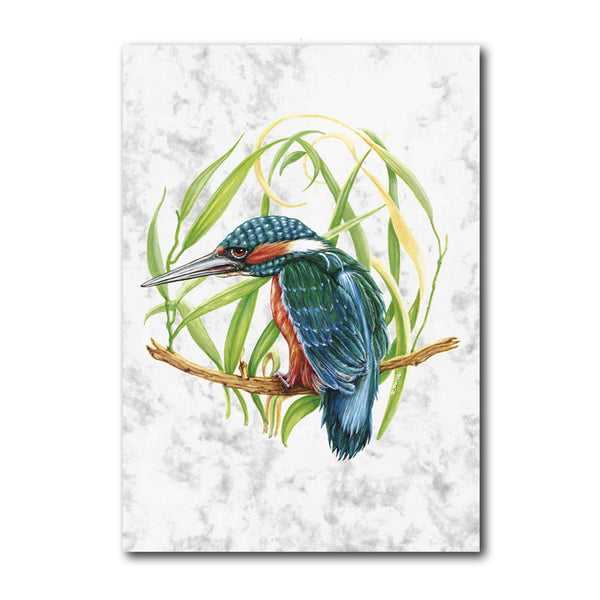 Kingfisher Marble Postcards from Dormouse Cards