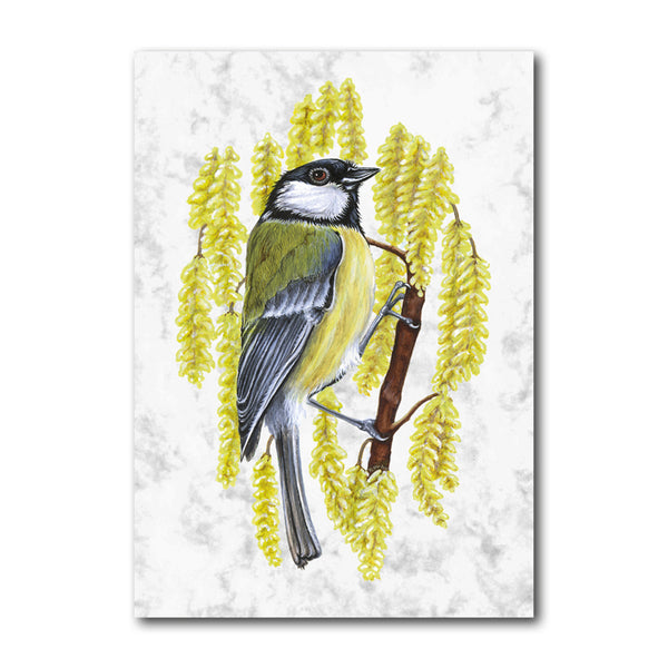 Great Tit Marble Postcards from Dormouse Cards