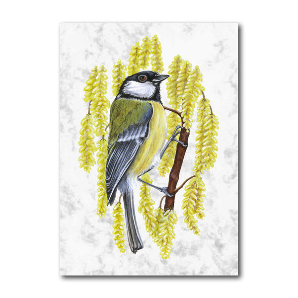 Fine Art Great Tit Greetings Card from Dormouse Cards