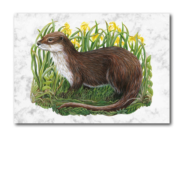 Fine Art Otter Greetings Card on Luxury Marble board on Dormouse Cards
