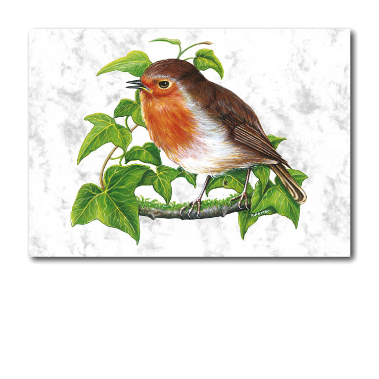 Marble Robin Greetings Card and Gift Tags from Dormouse Cards