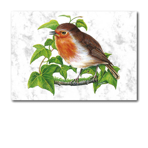 Fine Art Robin Greetings Card on Luxury Marble board from Dormouse Cards