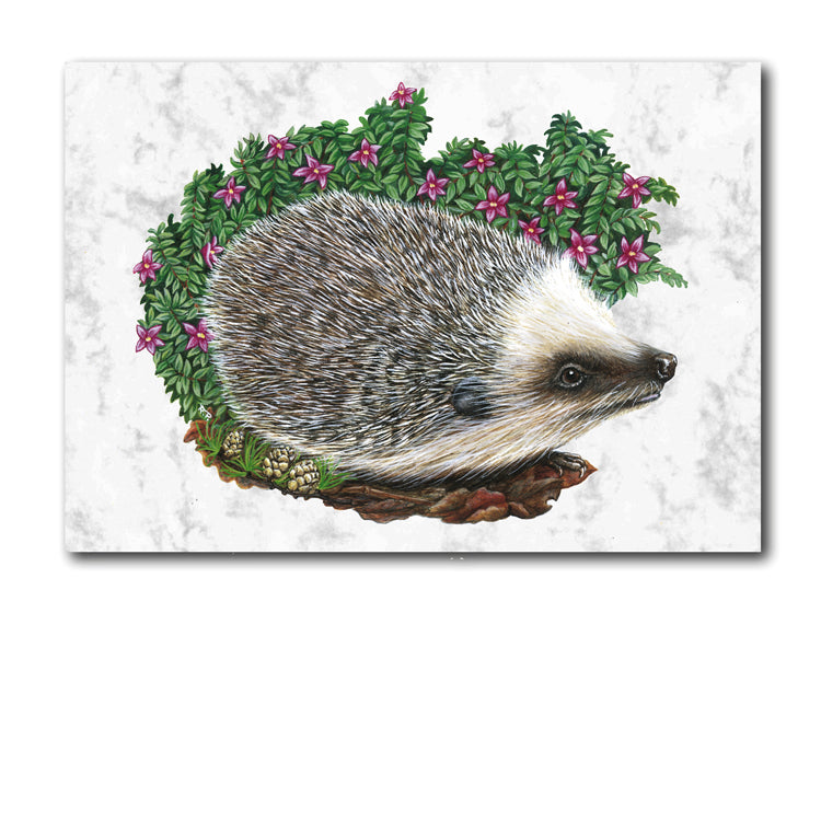 Hedgehog Marble Notelets from Dormouse Cards