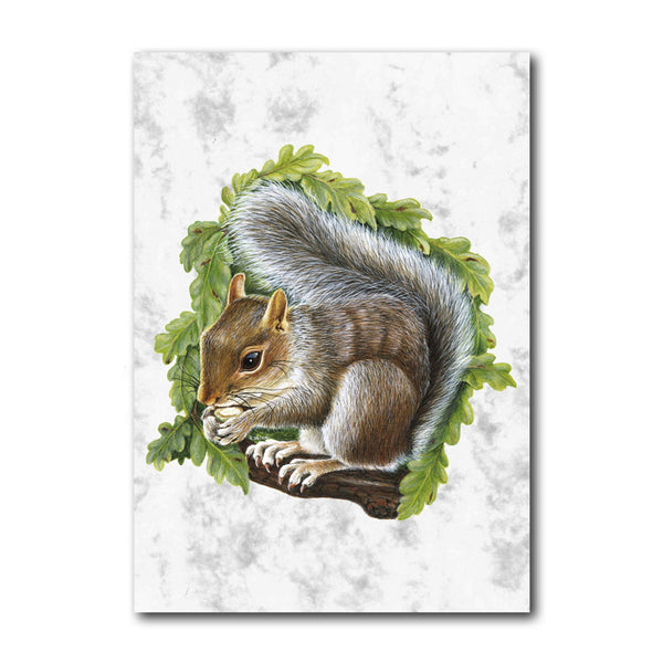 Fine Art Squirrel Greetings Card on Luxury Marble board from Dormouse Cards
