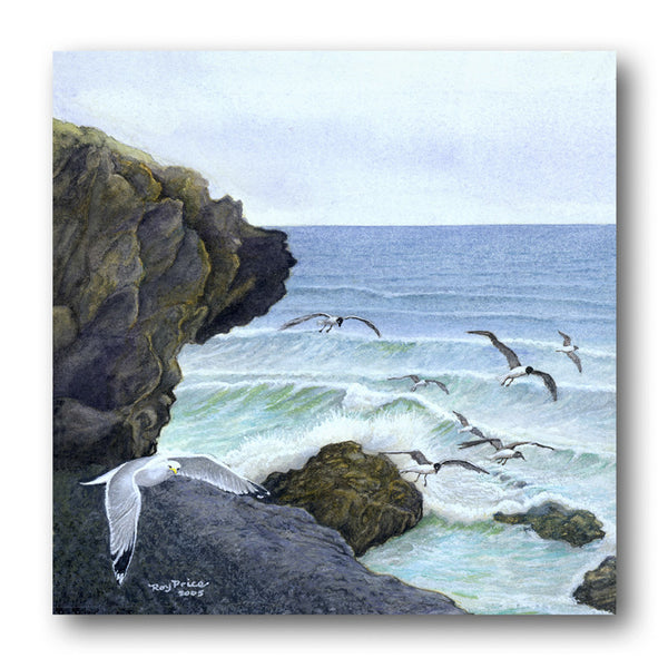 Fine Art Father's Day Card - Seagulls over Cornwall from Dormouse Cards