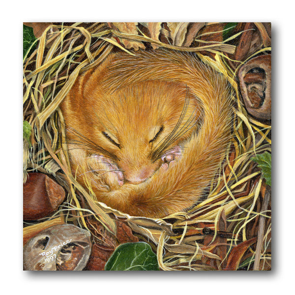 Fine Art Dormouse Greetings Card from Dormouse Cards