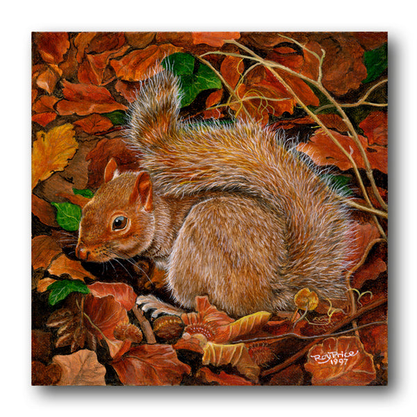 Fine Art Squirrel Notelets from Dormouse Cards